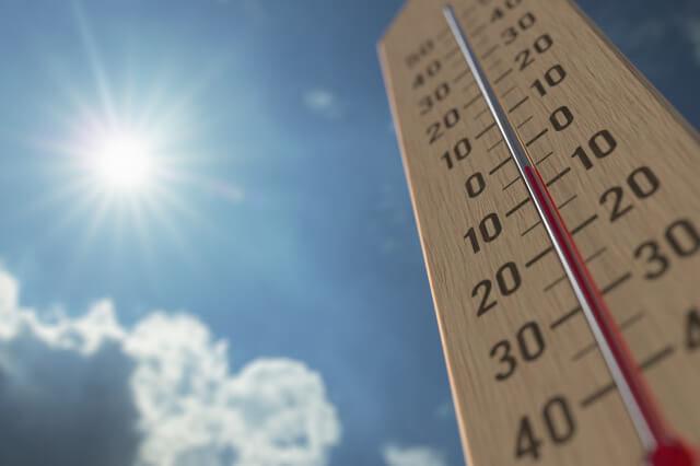 ふんグラム選手権の温度